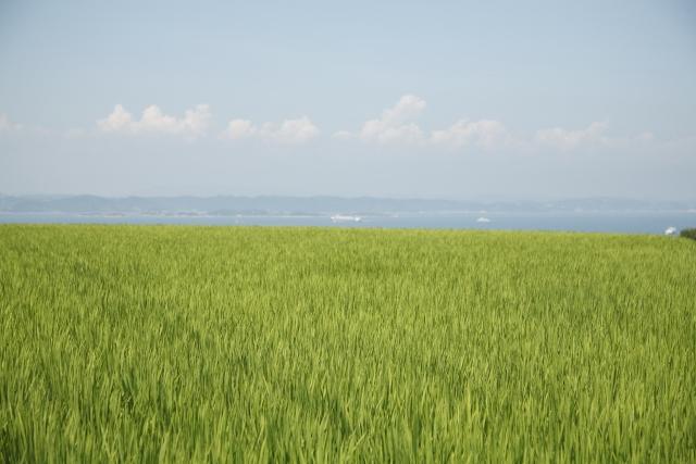 島のイメージ写真